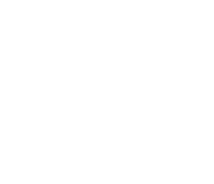 Troy Shows Up Store